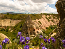 Walks in valleys and local sight-seeing in Cappadocia